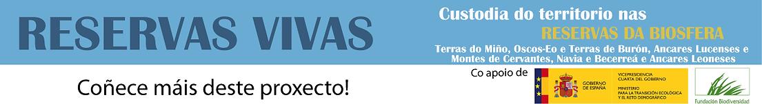 banner-web_portada.png