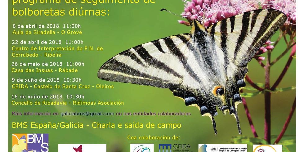 Xornada de divulgación do programa de seguimento de bolboretas diúrnas