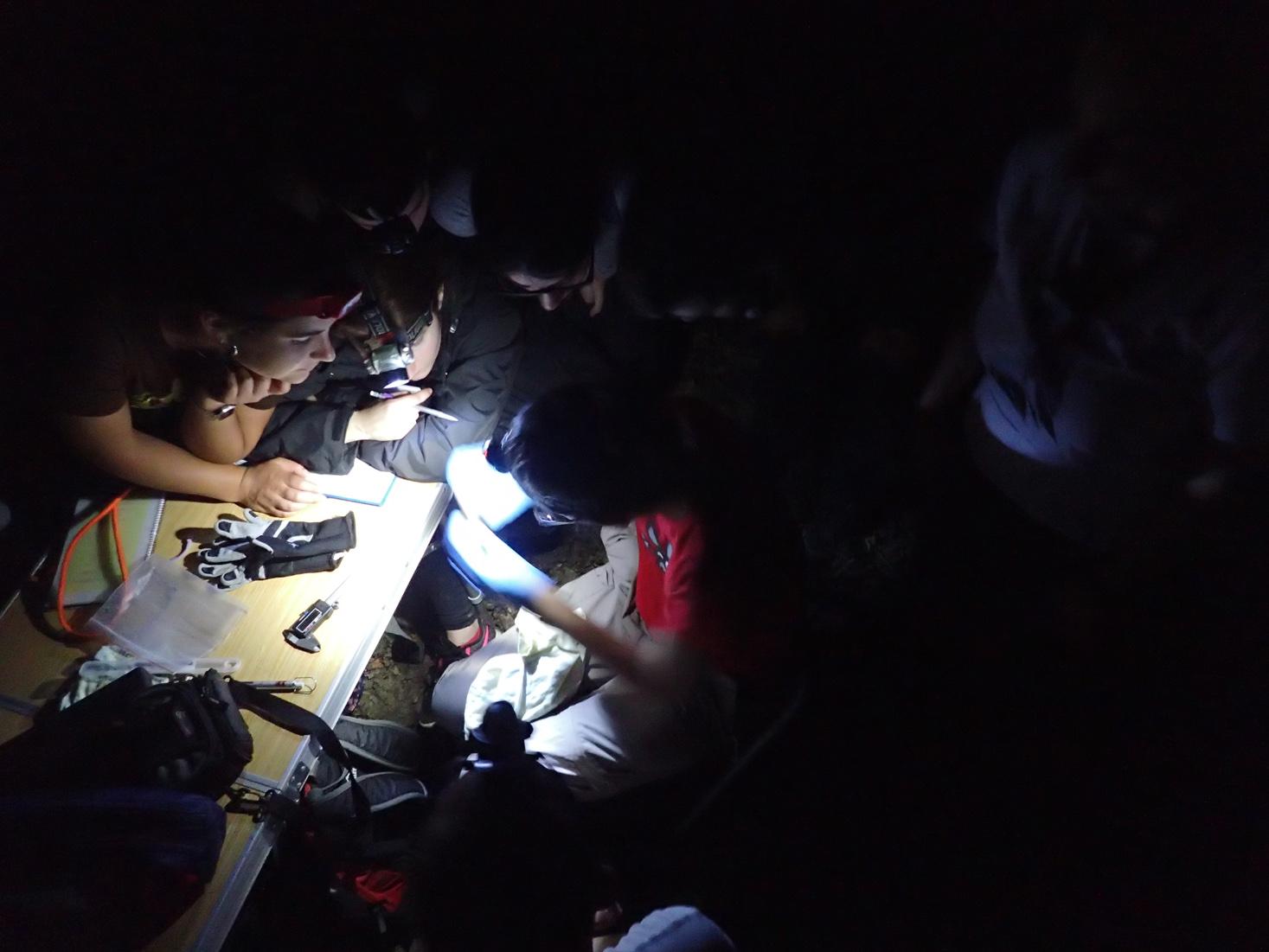 traballo nocturno, insuaCAMP2019
