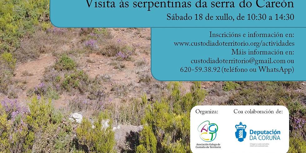 Endemismos do centro de Galicia. Visita ás serpentinas da serra do Careón