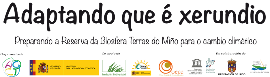 Banner_cabeceira_web.png