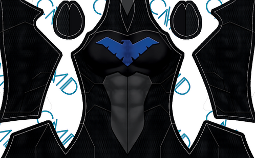 Nightwing Young Justice Male