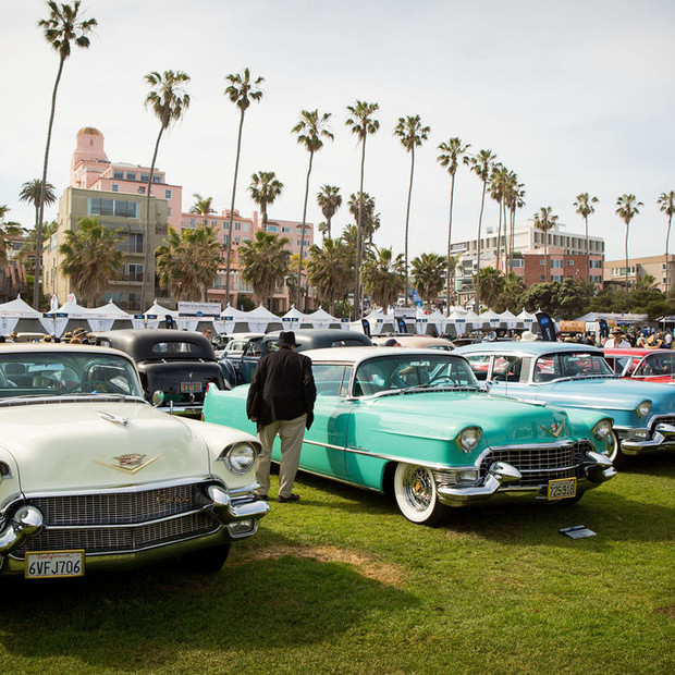 Classic Cars with Palm Trees