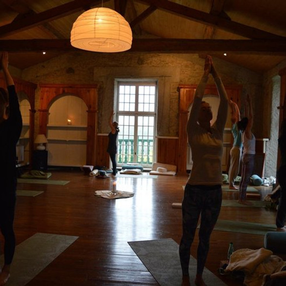 Yoga Sutras of Patanjali II   Raja Yoga Teacher Training