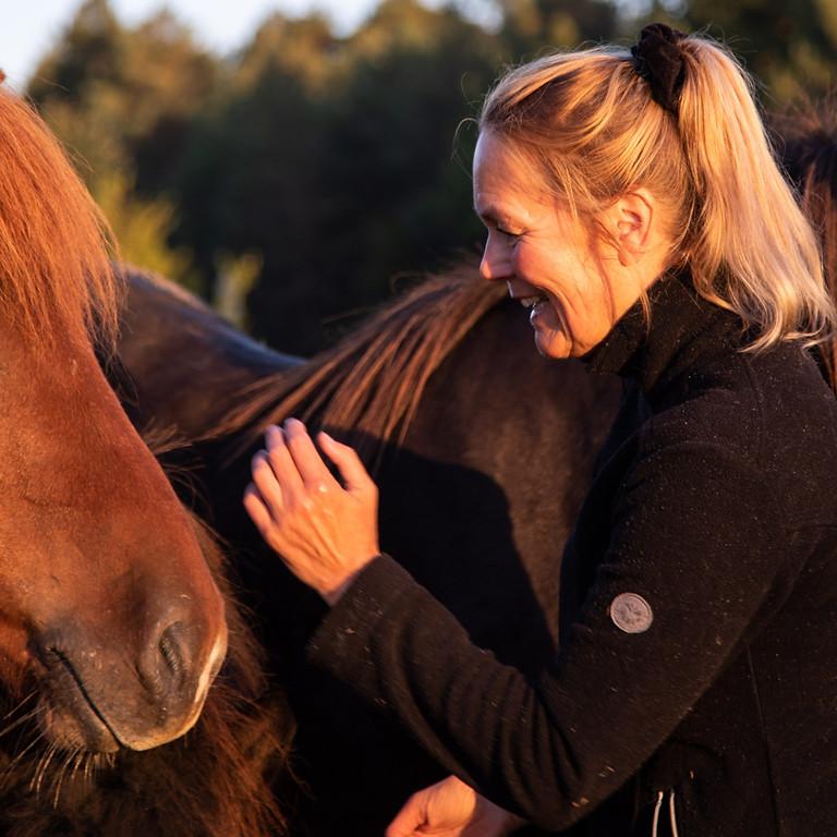 Coaching with Horses   Yoga & Meditation Retreat
