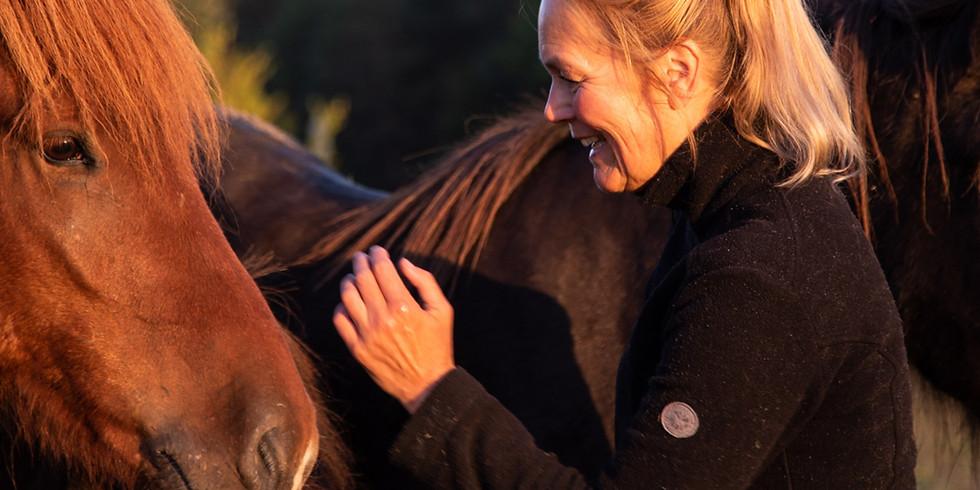Coaching with Horses | Yoga & Meditation Retreat