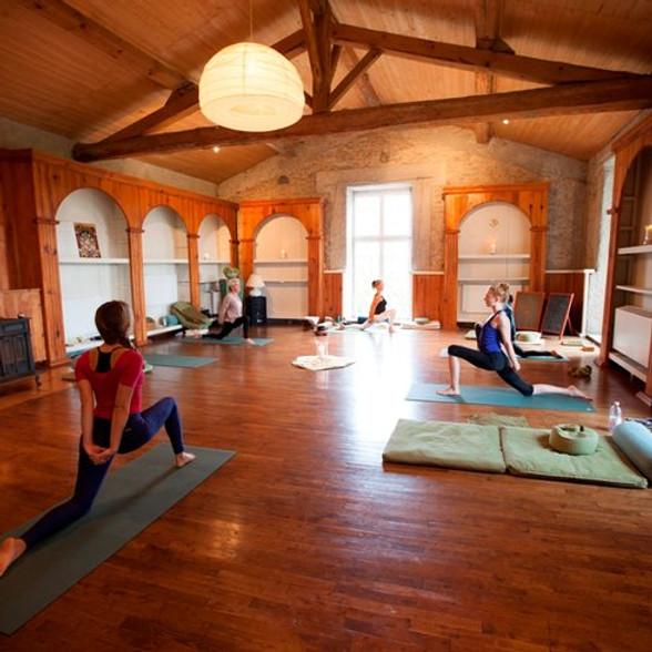 Yoga Sutras of Patanjali I   Raja Yoga Teacher Training Module I