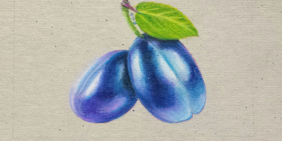Sip n' Sketch with color pencil artist Ekta Gupta