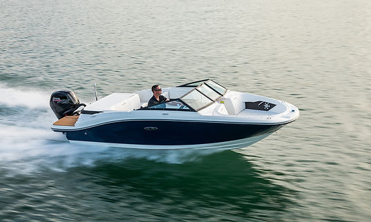 Sea Ray SPX 190 Outboard.jpg