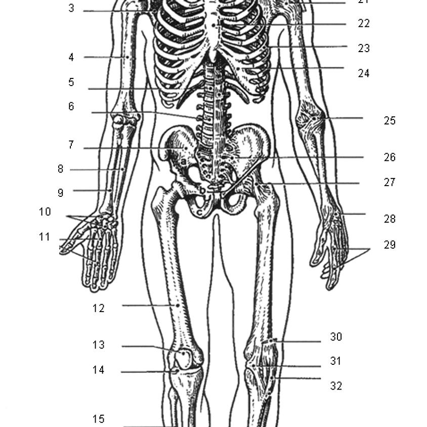 """Anatomie Workshop """"UNDER"""" Ground"""