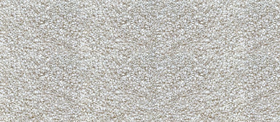 lamarriterranea-arroz2.jpg