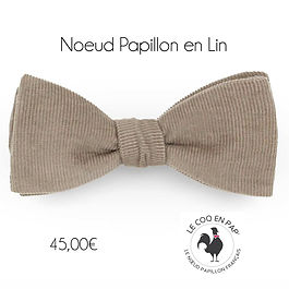 Noeud-papillon-velour-beige-sable-homme-
