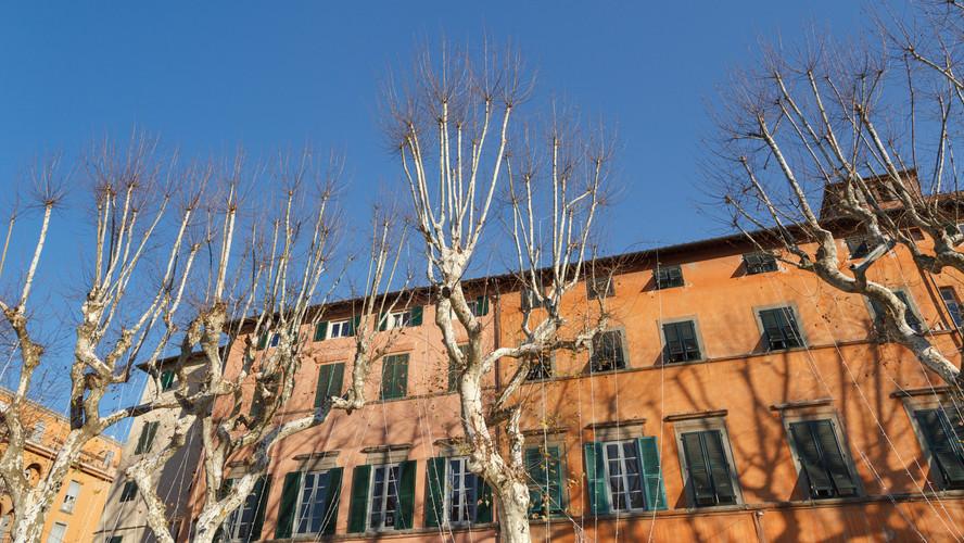 Via Cittadella Lucca