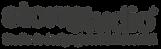 Logo STORM STUDIO