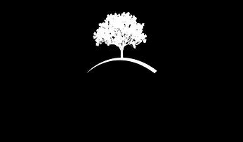 Bennett Hill Insurance Group Logo ORIGIN