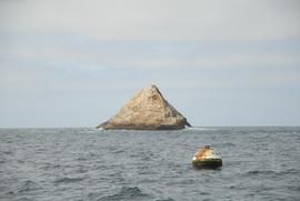 farallon and buoy.JPG