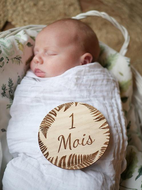 12 cartes étapes bébé premiers mois - fougère-