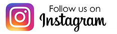InstagramLogo PM.png