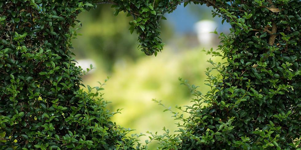 Geleide meditatie - Zelfliefde - Voor wie stroom jij?