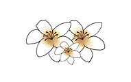 Logo bloemen.jpg