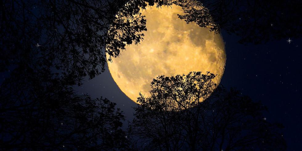 Volle maan ceremonie