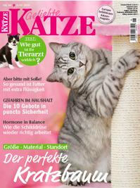 GelKatze519.png