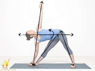 Beyond Asana: redefining the way we look at posture