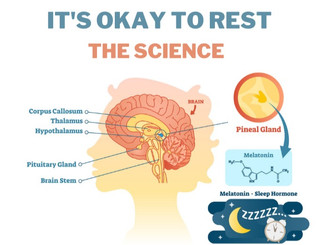 Why it's Okay to Rest, (Backed by Science)