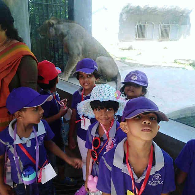 3rd Years Field Trip- Zoo Visit.jpg