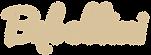 logo_pogrubione_WPE-1.png