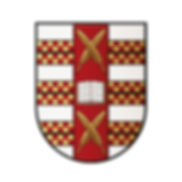 Antonio-de-Sotomayor-Shield-screen.jpg