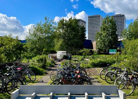 NYMbank fontaal bij fietsen.jpg