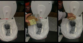 Composting Toilet Vlog Review #1