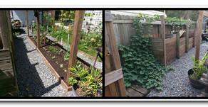 Pathways in your BoonJon Garden