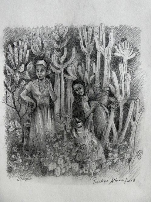 Femmes à Sidamo, Ethiopie