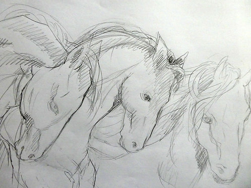 Série chevaux   30 x 40 cm