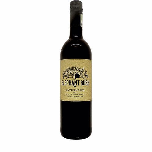 Vinho Tinto seco Elephant Bush Succulent Red - África