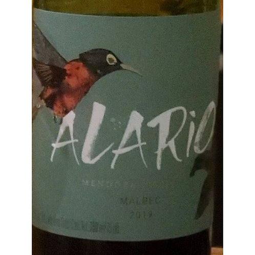 Vinho Tinto seco Alario Malbec  Argentina