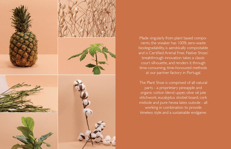 PlantBasedShoeVersion15.jpg