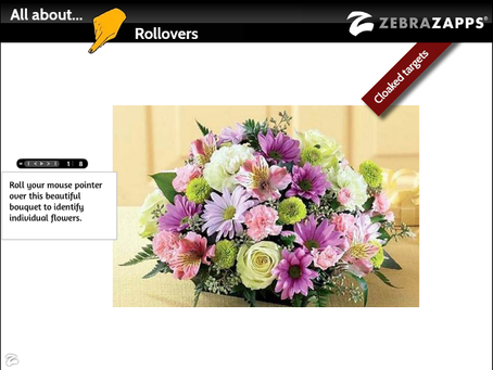 Discover ZebraZapps - All About Rollovers