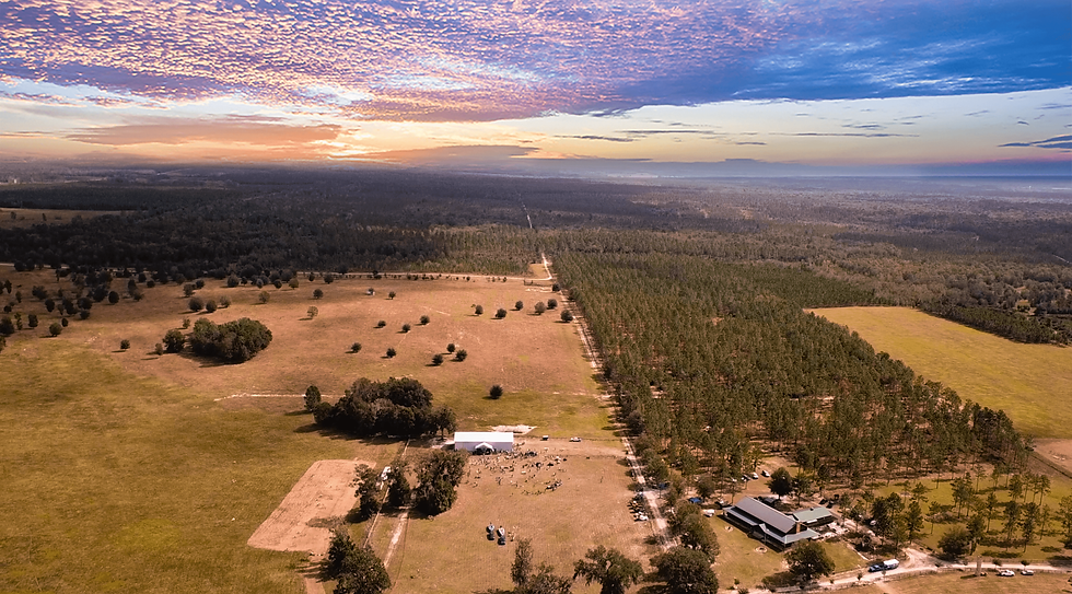 Drone Photo Sketter Ranch.png