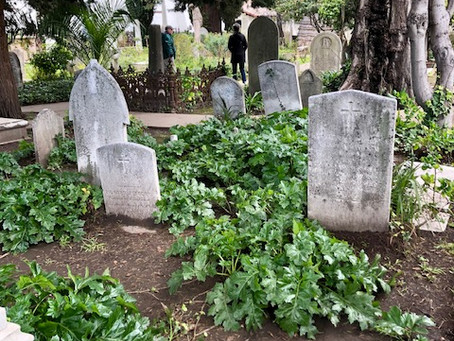 Mission Dolores:Scavenger Hunt in a Cemetery!