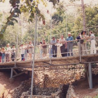 Puente en el lepidoctario del Jardín Botánico, aún en construcción - 1993.