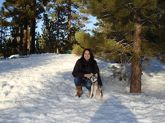 Christina and Luna. Gluten Detection Service Dog, Celiac Service Dog, Migraine Alert Service Dog. Gluten Detection Trainer, Scent Detection Trainer, Service Dog Trainer. Christina and Luna are pictured in a mountain national forrest in winter. The ground is covered in white snow, there are pine trees to their left and behind them. Christina is kneeling, with Luna sitting next to her left side. Both are looking at the camera.