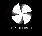 BF logo round  v1.png