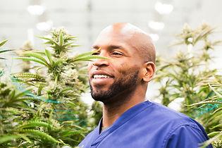 Eugene-Monroe-Cannabis 1.jpg
