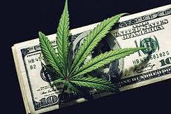 cannabis and cash 1.jpg