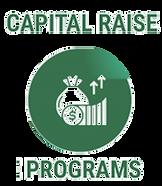 Services Button Capital Raise 1.png