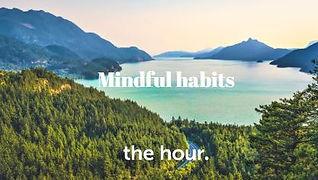 mindful habits tips.JPG