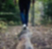 mindful walk balance square.jpg